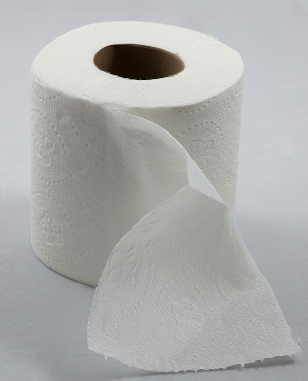 Green Bay, Wisconsin is the The Toilet Paper Capital of the World.